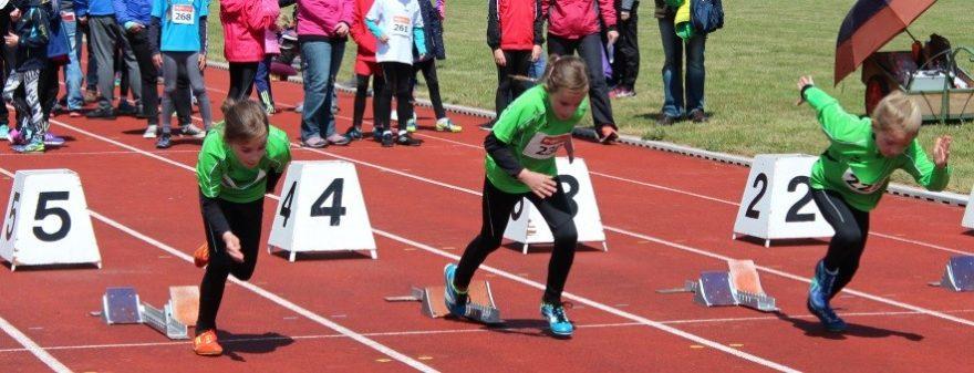50 m-Lauf der Mädchen